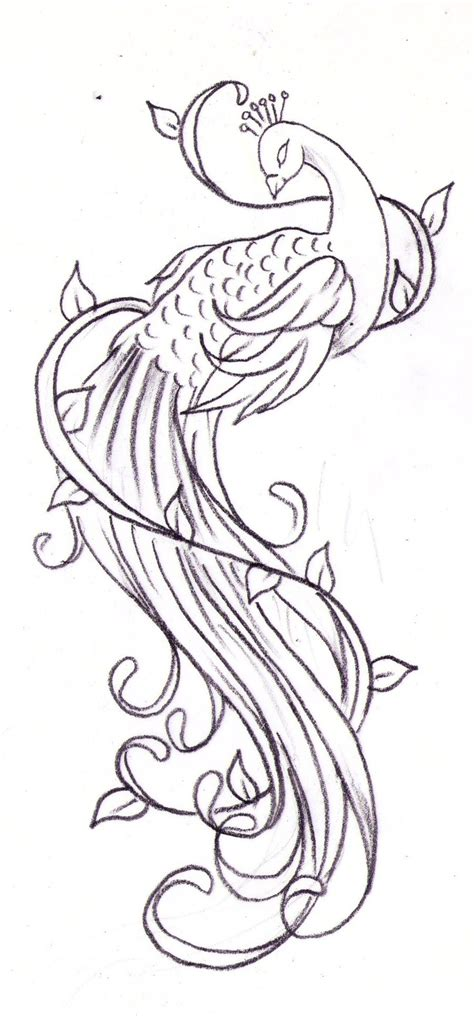 sketch tattoo peacock tattoos designs ideas and meaning tattoos for you