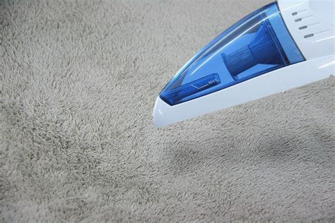 Which Carpet Or Paint - how to get acrylic paint carpet 8 steps with pictures
