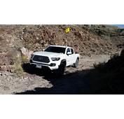 3rd Gen White Tacomas Post Them Up Tacoma World  Autos
