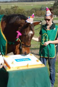 sportsbet com au wishes all the horses a happy birthday