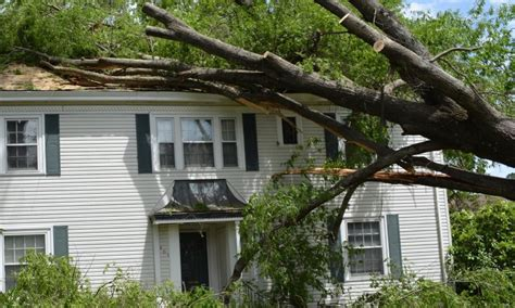 tree falls on house insurance tree falls on house insurance tree fell on house house plan 2017