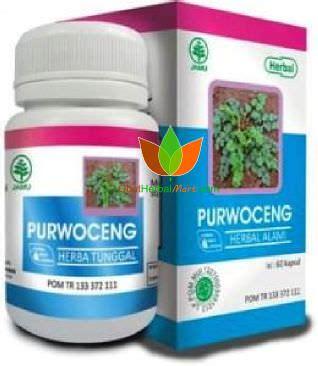 Obat Herbal Indo Utama kapsul purwoceng herbal indo utama toko obat herbal