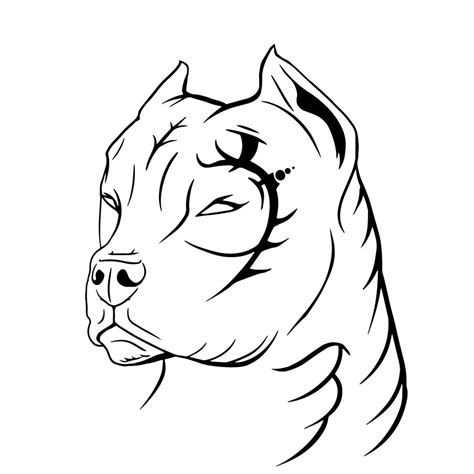 collection of 25 tribal pitbull tattoo design
