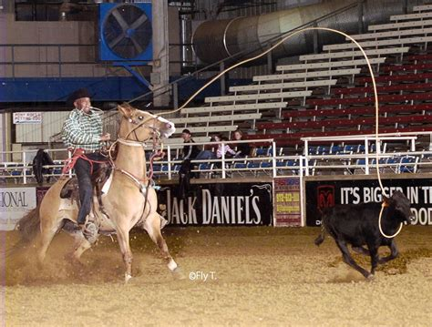 cowboys of color cowboys of color national finals rodeo gallops into