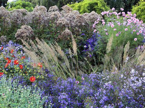 Garten Pflanzen Oktober by Garten Im Oktober Das Ist Zu Tun Und Auf Keinen Fall