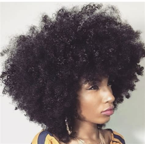 afro textured hair wikipedia baronesscountess afro hair fro d out hair big hair