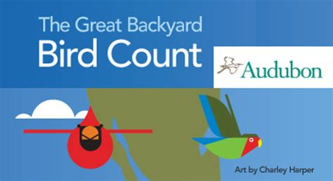 Great Backyard Bird Count The Great Backyard Bird Count Chapelboro