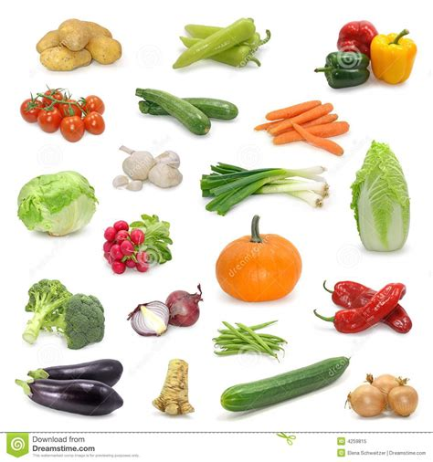 l m vegetables vegetable collection stock image image of isolated gourd