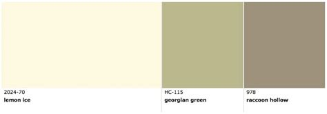 pin by sadaf shamshad on paint colors for the home
