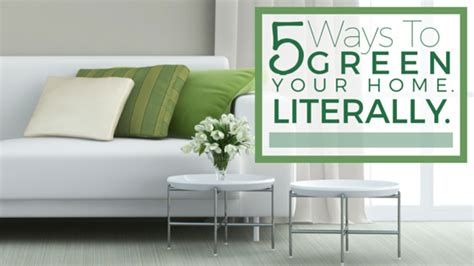 home decor green 5 ways to green your home literally the maids blog