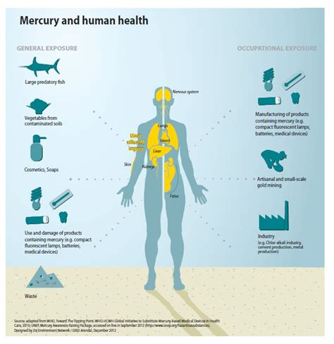 Mercury Poisoning Detox Symptoms by Mercury S Toxic Legacy In Check At Last A Treaty To