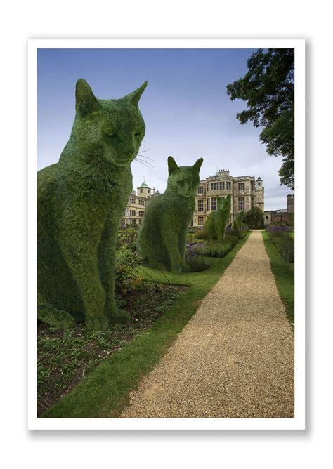 topiary cat topiary cat the avenue