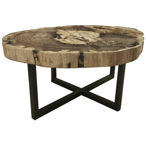 Large Wood Coffee Table Petrified Wood Large Thick Coffee Table Indonesia Contemporary For Sale At 1stdibs