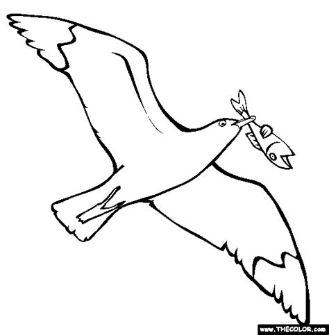 sea birds coloring pages bird online coloring pages page 1