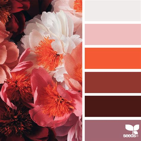 nature inspired color palettes aka design seeds for designers crafters and home decorators nature inspired color palettes aka design seeds for