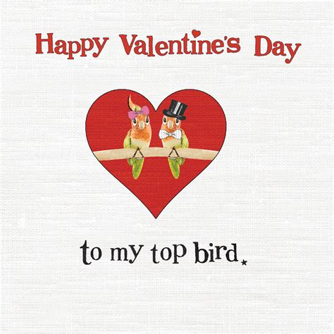 happy valentines day my to my top bird happy s day pictures photos