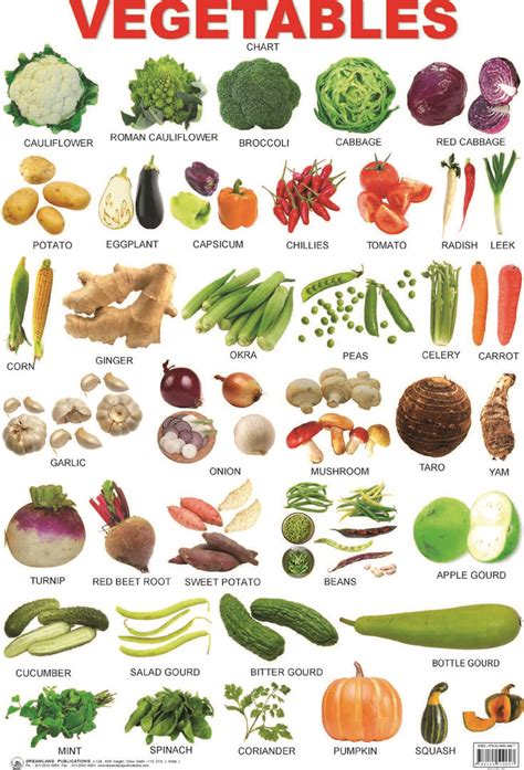 google images vegetables picture dictionary google search vocabulary
