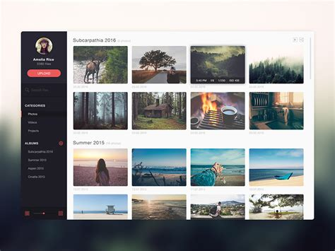 Photo Gallery Psd Template free photo gallery website application template