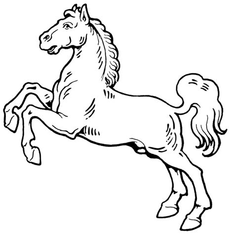 coloring pages of horses rearing horse rearing up coloring page purple kitty