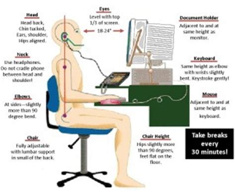 Ergonomic Desk Setup Daytime Ergonomics And Posture Tips