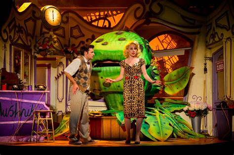 Review Shop by Review Shop Of Horrors The New Wimbledon Theatre
