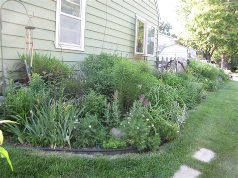 best plants for north side of house bushes for side of house 28 images the essential steps to landscape design diy