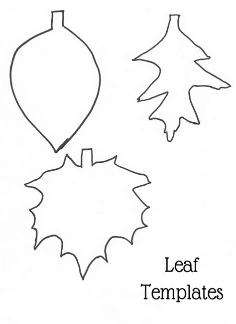 printable traceable leaves best photos of leaf outlines to trace leaf outline