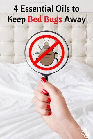 essential oils   bed bugs  organic aromas