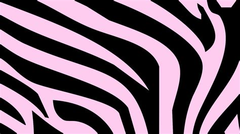 zebra print wallpapers light pink hd desktop wallpapers 4k hd