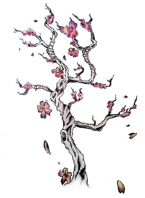 cherry blossom tree tattoos designs gallery cherry blossom designs