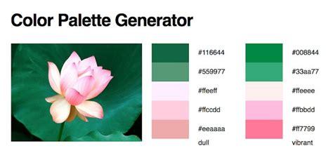 color palette creator 3 herramientas gratuitas para obtener la paleta de colores