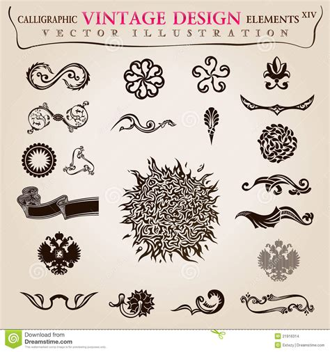 calligraphic elements vintage vector symbols stock vector