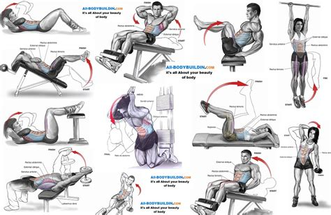 best bench press workout for strength best bench press routine for strength dumbbell decline bench press exercise database