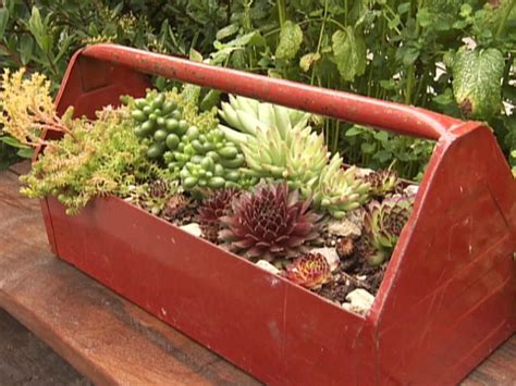 13 Unusual And Upcycled Container Gardens Diy Wacky Garden Ideas