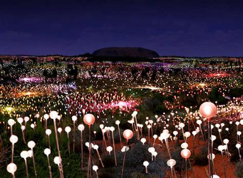 Field Of Light by Bruce Munro Announces Largest Solar Powered Field Of Light