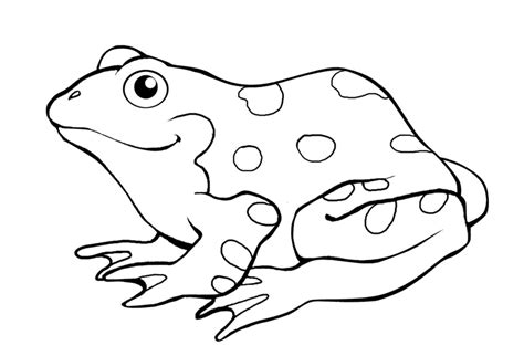 green frog coloring page free frog coloring pages to print out and color
