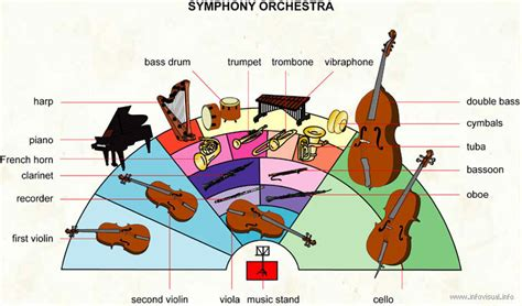 orchestra layout wikipedia xylophone like instruments newhairstylesformen2014 com