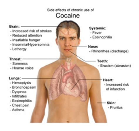 can you dye the skin on healthcare simulators long term effects of cocaine effects on mind and body