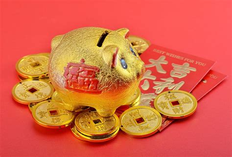 Golden Year Of The Pig 2007 by Why Babies Born In Year Of The Golden Pig Are So Lucky