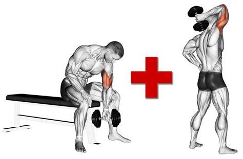 allenamento dorsali a casa dorsali allenamento a casa corpo libero