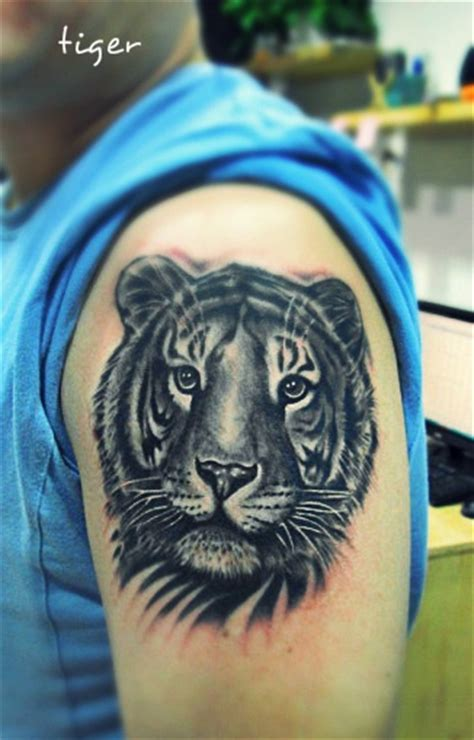 small tiger tattoo small tiger on arm tattoomagz