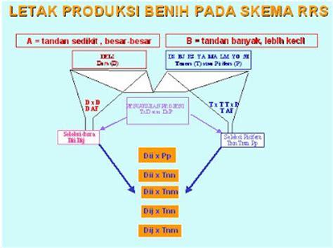 Benih Kelapa Sawit Hibrida forum komunikasi pbt apa dan mengapa benih palsu kelapa sawit