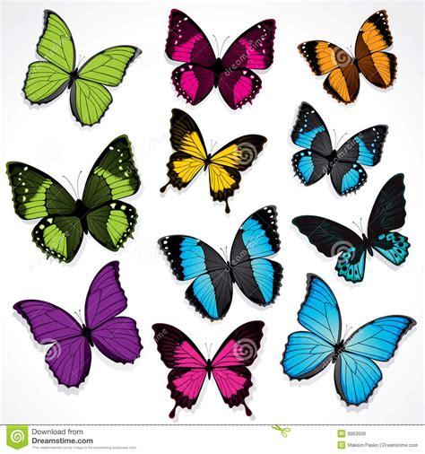 imagenes mariposas libres conjunto de mariposas coloridas imagen de archivo libre de