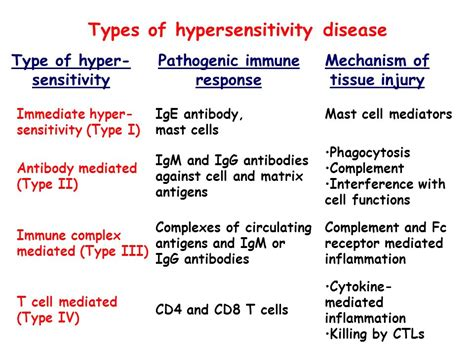 rype 4 secondary rype 2 lecture outline types of hypersensitivity reactions ppt