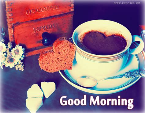 good morning love images good morning pictures photos quotes