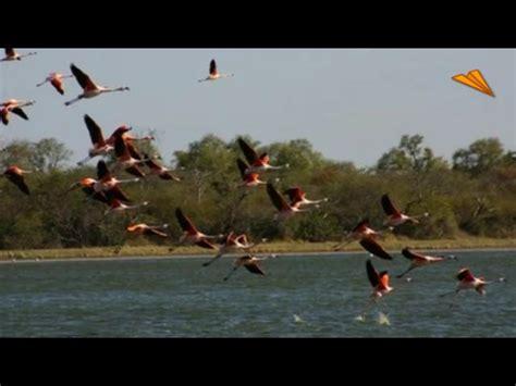 imagenes de paisajes naturales y culturales v 237 deo paraguay hermosos paisajes naturales y culturales
