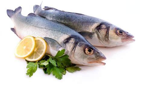 escuela de pescado 8415785712 pescado para controlar el colesterol y prevenir la obesidad karlos argui 241 ano