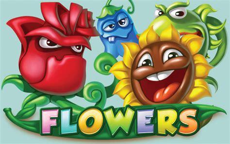 fiori africani fiori africani