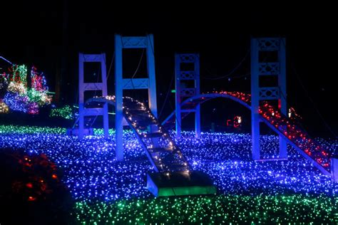 12 of the best light displays in washington this winter