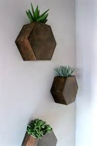 hexagon wall planter home decorating trends homedit